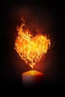 Hot Love p.o.
