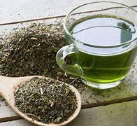 Groene thee extract 100 ml